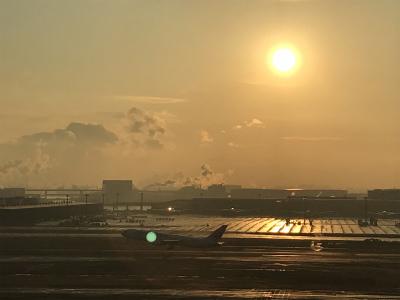 【HANEDA AIRPORT】